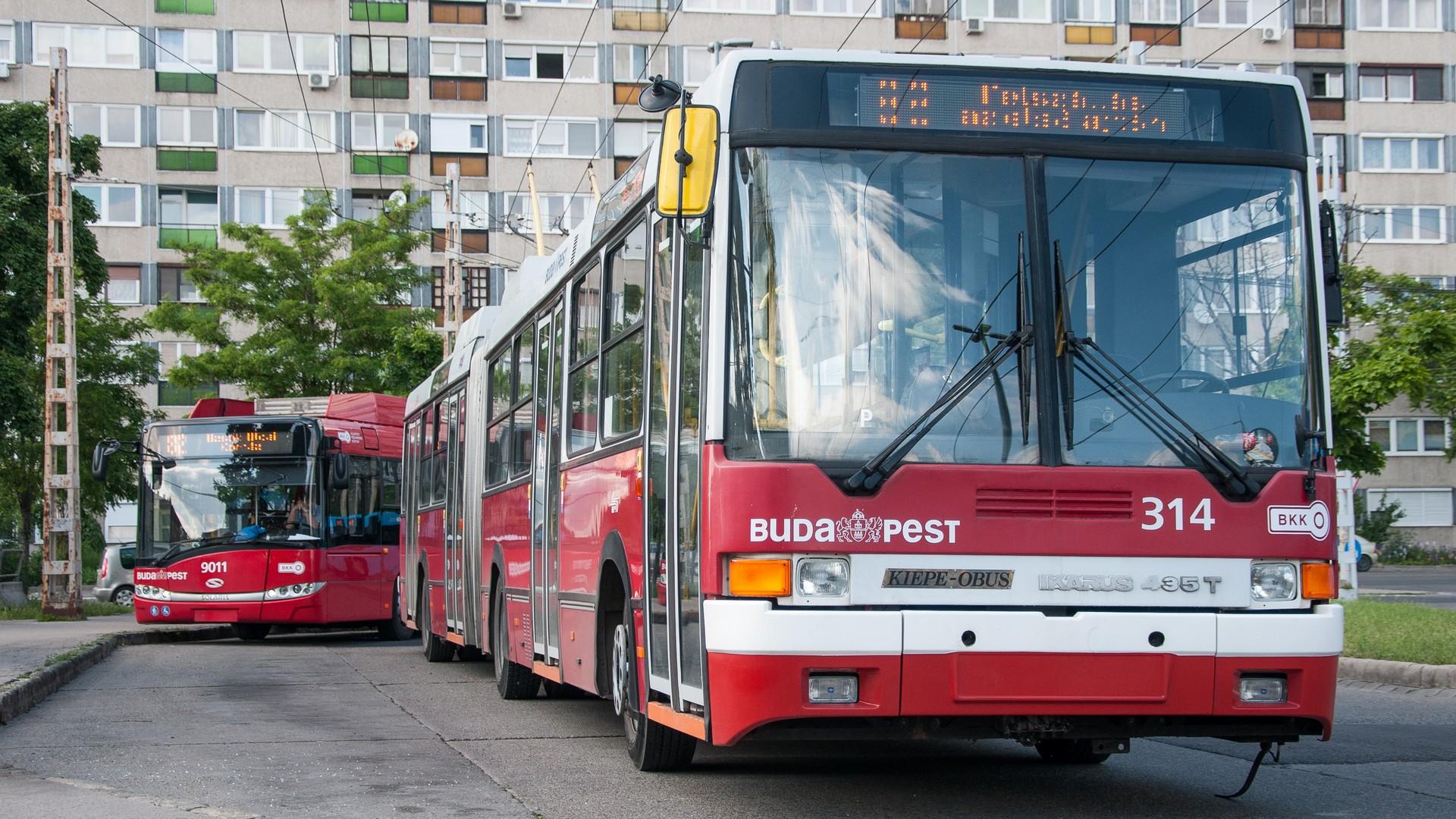 Ikarus 435T